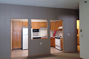 Complete kitchen including dishwasher, stove, refrigerator and microwave
